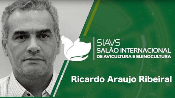 Capa do vídeo Avelive – Entrevista com Ricardo Araujo Ribeiral - plataforma de vídeos do agronegócio - Agroflix
