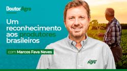Doutor Agro - um reconhecimento aos produtos brasileiros - Marcelo Fava Neves - plataforma de vídeos do agronegócio - Agroflix